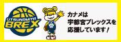 リンク栃木ブレックス